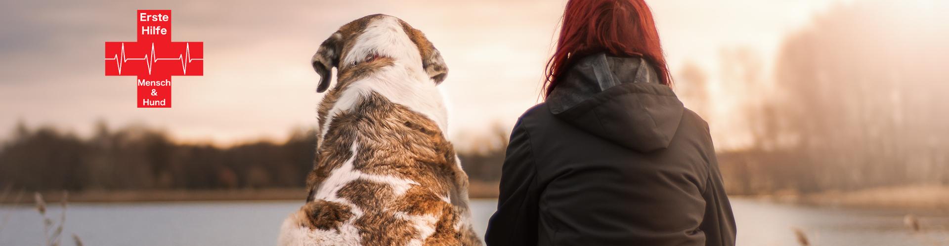 Erste Hilfe Mensch & Hund